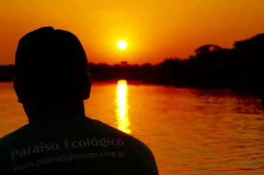 Brazil - Pantanal Wildlife - 76